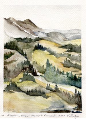 Watercolor - Hurricane Ridge