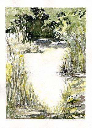 Watercolor - Sequim Pond