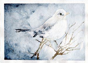 Watercolor - Mockingbird