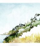 Watercolor - Dungeness Bay